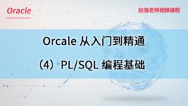 Oracle数据库从入门到精通(4)PL/SQL编程基础