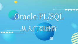 Oracle PL/SQL从入门到进阶