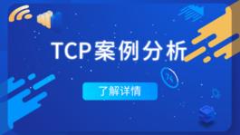 TCP案例分析