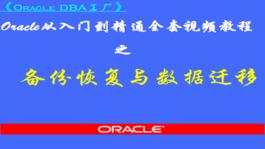 Oracle备份恢复与数据迁移