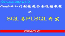 Oracle SQL与PLSQL程序开发