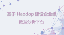基于hadoop建设企业级数据分析平台