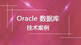 Oracle数据库技术案例
